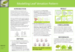 Graphics_Monsoon_2015Leaf Modelling